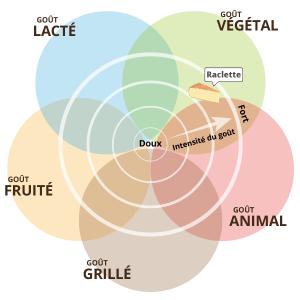 Gout raclette